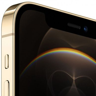 Смартфон Apple iPhone 12 Pro 128GB Gold (MGMM3/MGLQ3) Without Box